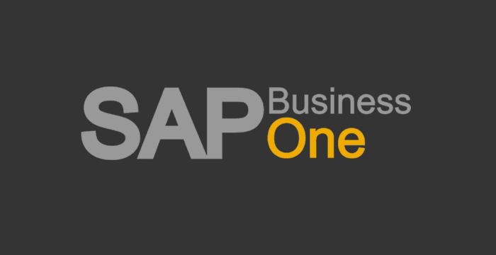 ¿Por qué Atlas Proyectos Informáticos como partner Sap Business One?